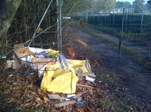 Deepcut fly tipping 171111